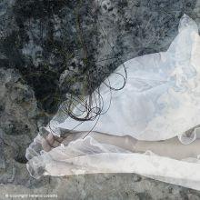 Cien años de sueño... y uno más   Helena Losada