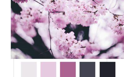 10 paletas de color para tus diseños